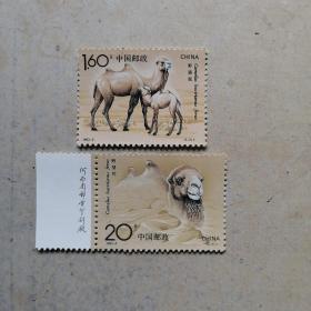 邮票1993-3野骆驼