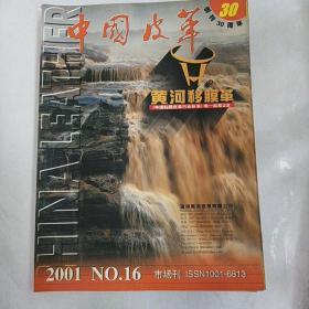 中国皮革2001年16期