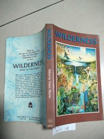 WILDERNESS [荒野}  扉页有字