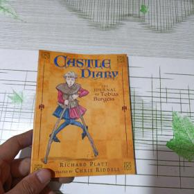 Castle Diary: The Journal of Tobias Burgess