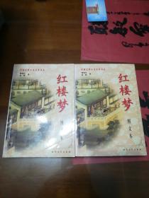 红楼梦 【上下册】图文本
