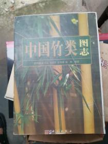 中国竹类图志    一定看描述