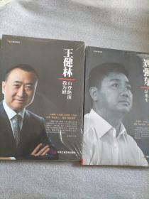 刘强东 人到绝境是重生,王健林山登绝顶我为峰 两册