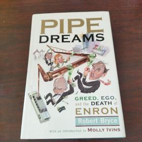 安然帝国梦 PIPE DREAMS: GREED, EGO AND DE
