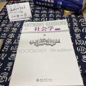 社会学:第七版下