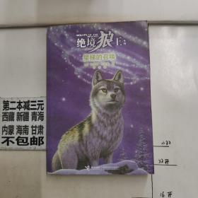 绝境狼王系列4:星梯的召唤