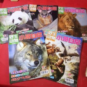 野生动物画报小哥白尼2012年7-8、9、10、11、12期共5本合售