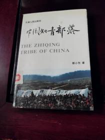 中国知青部落(修订版)【馆藏,93年1版1印】