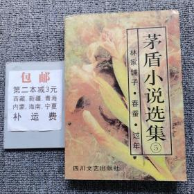 矛盾小说选集5