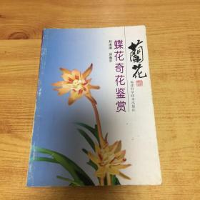 兰花蝶花奇花鉴赏