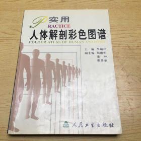 实用人体解剖彩色图谱【16开--36】