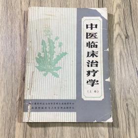 中医临床治疗学(上、下)两册