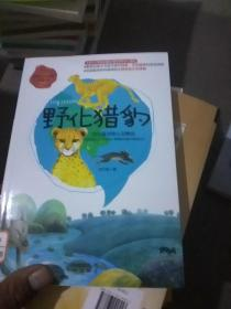 世界科普文学经典美绘本  野化猎豹  沈石溪动物小说精选