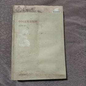 郑大史学文库:中国文化史探研