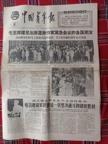 中国青年报(增刊第53号)