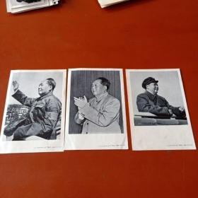 人民美术出版社64开毛主席纸质照片3张 T8027_4861、4866、4960