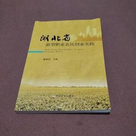 湖北省新型职业农民创业实践