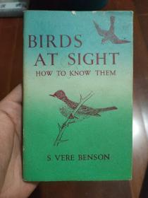 英文 BIRDS AT SIGHT HOW TO KNOW THEM(小開本)