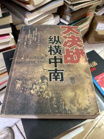 纵横中南:长篇战争纪实文学