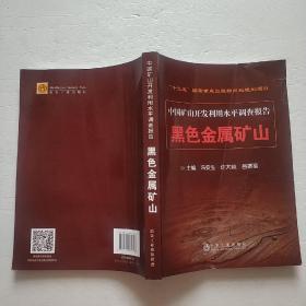 中国矿山开发利用水平调查报告:黑色金属矿山