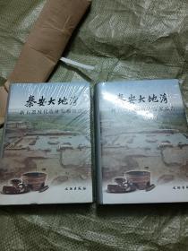 秦安大地湾:新石器时代遗址发掘报告(上下)