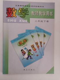 义务教育课程标准实验教科书——数学·教师教学用书(六年级,下册) (1版3印)(有光盘),