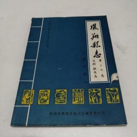 凤翔县志 第十六卷 文物胜迹志(送审稿) 油印
