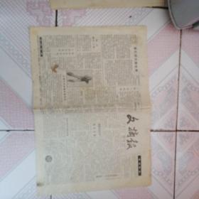 文摘报 1991年6月20日