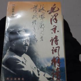 毛泽东诗词解读