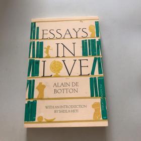 Essays in Love 爱情笔记