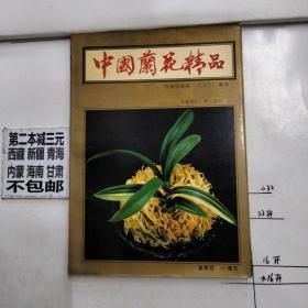 中国兰花精品:投资与栽培