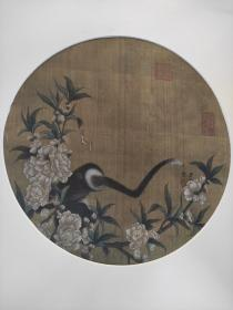 皇十一子、张伯駒鉴藏 猿猴戏蝶图 绢本 宋人画作小品