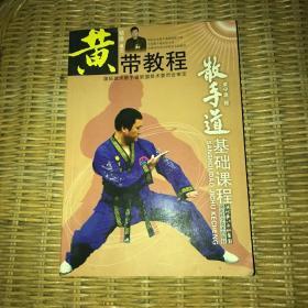 黄带教程:散手道基础教程