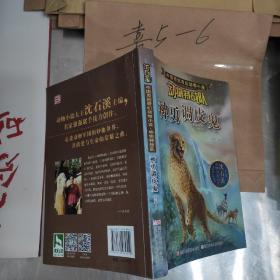 沈石溪中国原创奇幻动物小说·动物特战队:神勇调皮鬼