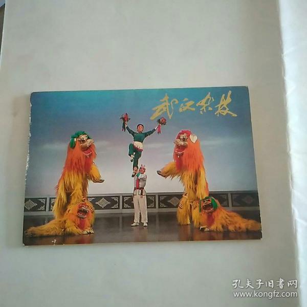 武汉杂技  图书照片 10张