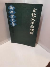 文化大革命观察:竹内实文集[第六卷]