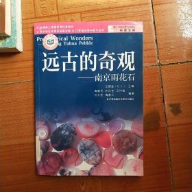 远古生命的探索·远古的奇观:南京雨花石(无笔记无划线)