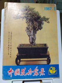 中国花卉盆景1987年第3期