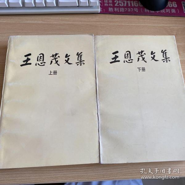 《王恩茂文集》(上、下册)