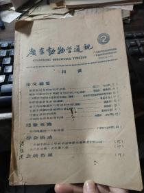 广东动物学通讯 2
