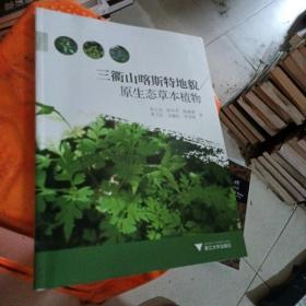 三衢山喀斯特地貌原生态草本植物