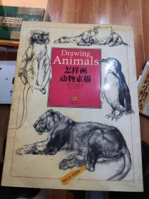怎样画动物素描