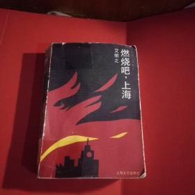 燃烧吧,上海(馆藏本)