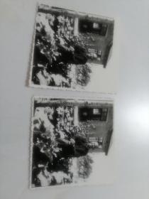 老年人照片两张