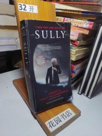 Sully (international edition)