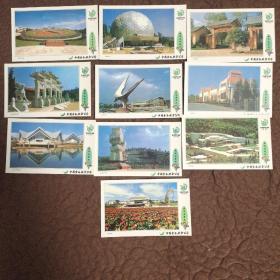 1999年世博园景观(1)十张