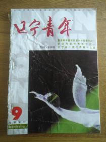 辽宁青年 1995 9