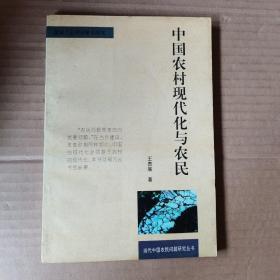 中国农村现代化与农民