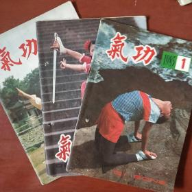 《气功》1985年 1.2.5册 3册合售 浙江中医杂志社 私藏 书品如图
