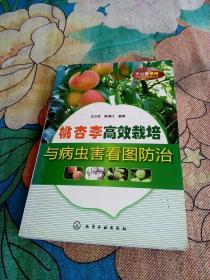 桃、杏、李高效栽培与病虫害看图防治   (书内有些许画线和笔记)